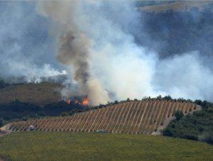 Wildfires beyond Stone Edge Farm